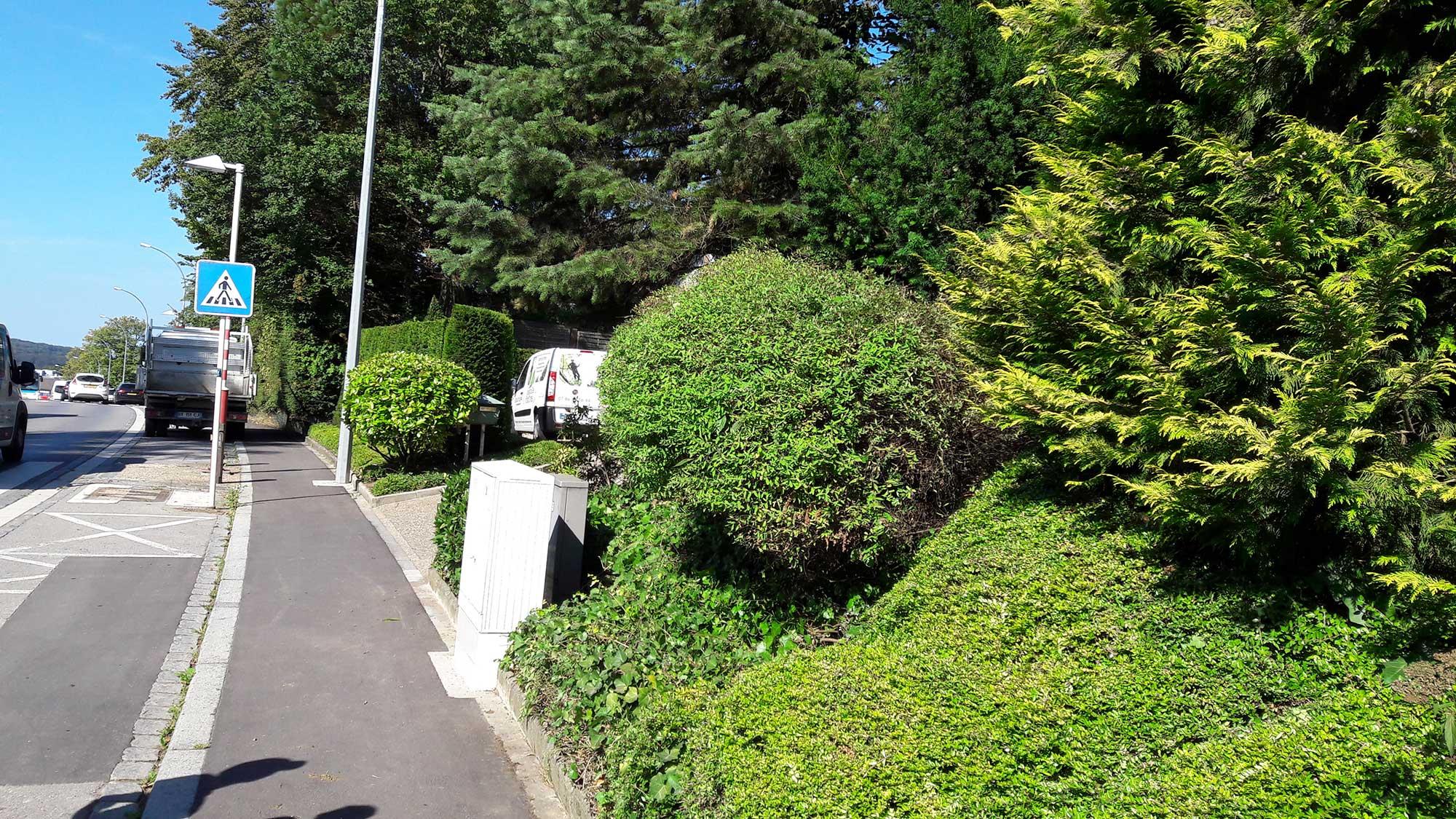 Entretien d 39 un jardin s a r l des tailles d 39 arbres for Entretien de jardins