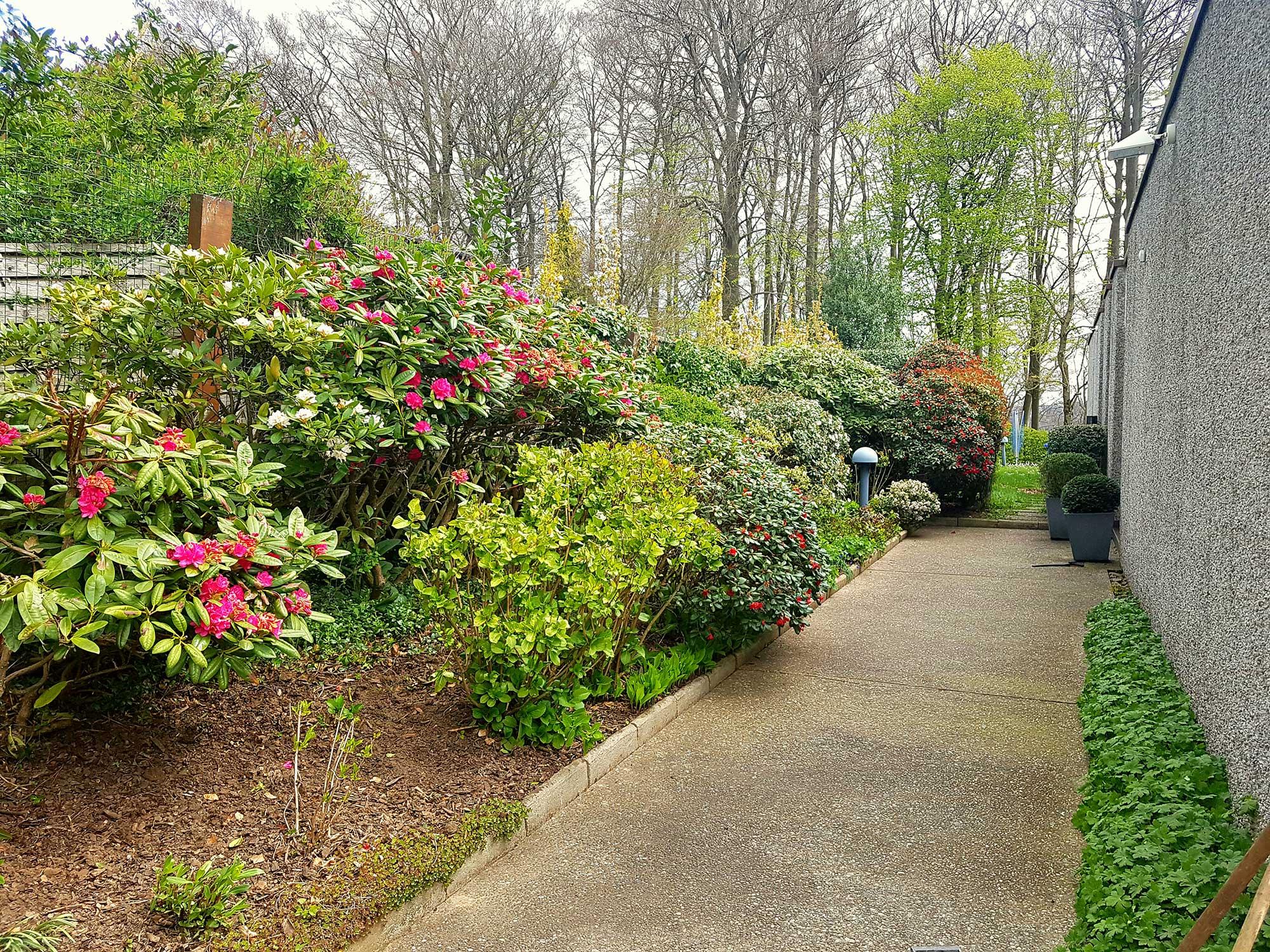 Entretien d 39 un jardin s a r l des tailles d 39 arbres for Entretien jardin 86